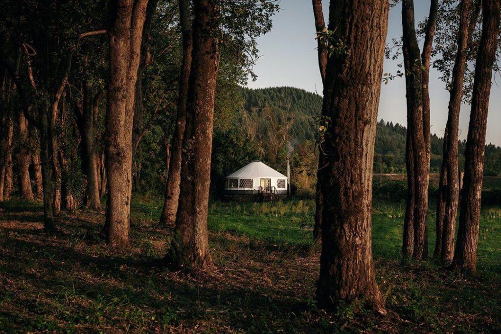 Юрта в лесу