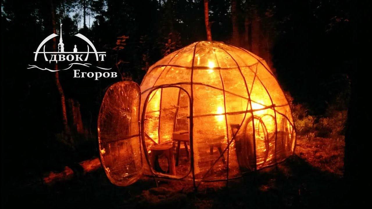 Лесной купол адвоката Егорова